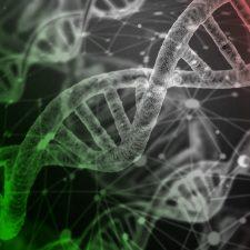 Racismo, genética y sorpresas